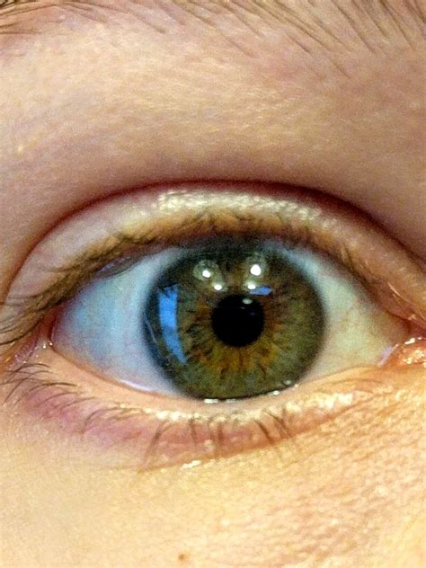Are my eyes light brown, amber or hazel?