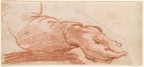 Italian School | Lower Right Arm with Sleeve, Casting a